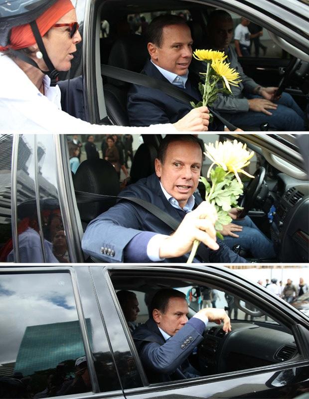 Doria flores